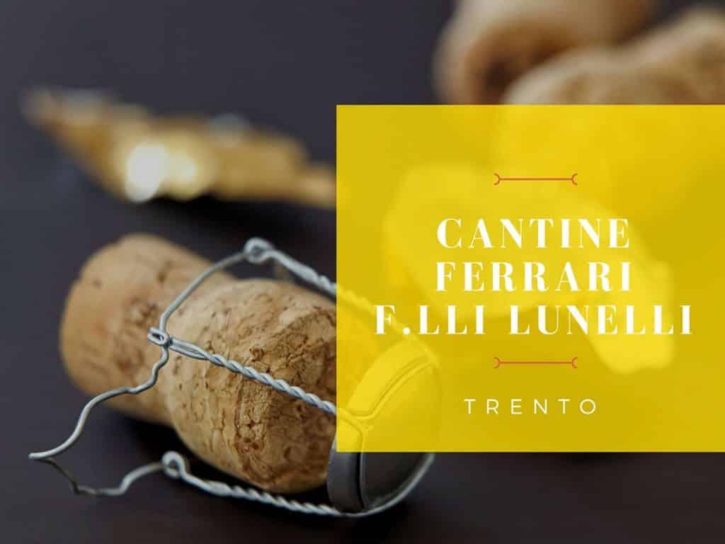 Industory: il caso Cantine Ferrari F.lli Lunelli